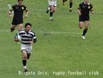 2013東日本セブンス